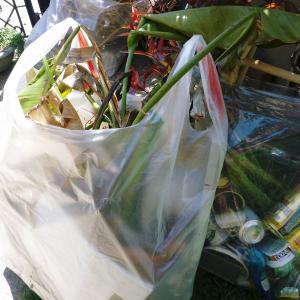 ゴミ袋2個
