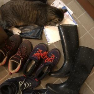 娘の登山靴3足  私の長靴 マスク
