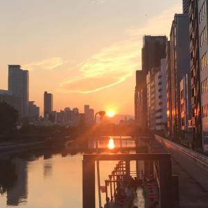 淀屋橋の日の出、朝潮橋の日の入り