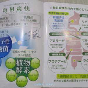 植物酵素&乳酸菌配合の犬用腸活サプリ!【毎日爽快】