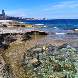 コロナ第2波、再封鎖が心配…マルタ留学申込のベストな時期は?
