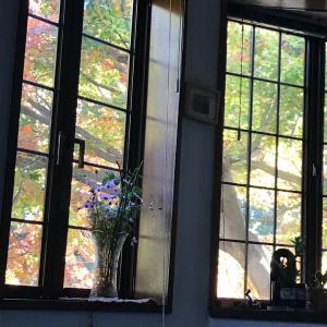 一年に一度の秋を楽しむ
