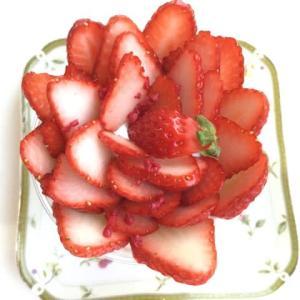 シャンポールさんのケーキ