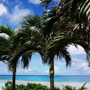 海と空と椰子の木がある沖縄の風景
