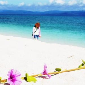 今年の夏は沖縄に行きませんか 竹富島他八重山諸島編
