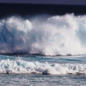 沖縄旅行が台風で中止になる確率  ver 2.1