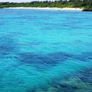 さらにもっと誰もいない海 多良間島の港の海