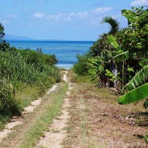 竹富島のトゥードイ海岸・ヌヌッシャー浜