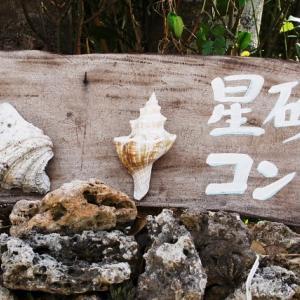 竹富島リゾート開発問題 訴訟では反対派が勝訴