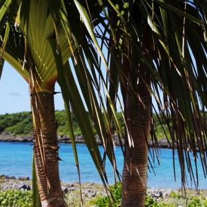 シュノーケリングも楽しめる宮古島のシギラビーチ