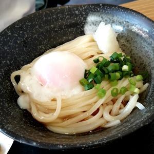 「さぬき 麺天」のコシのある讃岐うどんが旨い!