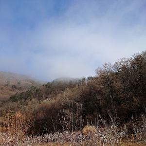 ( ̄‥ ̄) 今朝は霧が出ていた信州上田でございます。