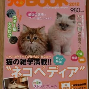 『まんがで読む はじめての猫のターミナルケア・看取り』