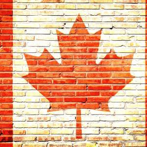 カナダ移民に必要な語学力試験☆対策セミナー開催決定!
