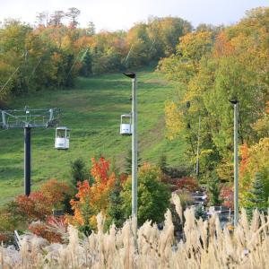 カナダの秋をお届け♪BLUE MOUNTINリゾート♪