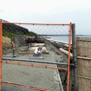 江の島30km走、台風19号の爪痕、