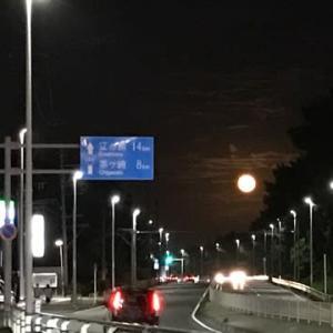 お月見ラン、