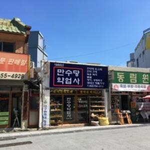 【2019年08月 大邱】旅レポ21 ~ 薬令市にあるヒーリングカフェ「茶香」へ ~