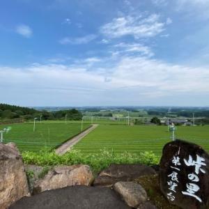 【宮崎をさるく】一面に広がる茶畑と日向灘を望む「峠の里」(川南町)