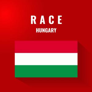 【2020F1ハンガリーGP】ベッテルは好判断と見事なレースマネージメントで逆境をはねのけ最大限の6位獲得