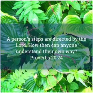今日のみことば 箴言20:24