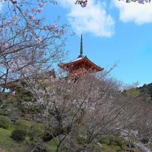 清水寺から二寧坂