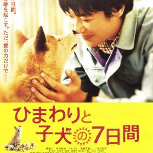 2013年の映画【 ひまわりと子犬の7日間 】を久しぶりに観た。