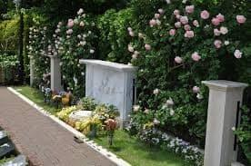 お墓問題、どうしましょうか。離婚した友の選択