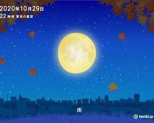 秋の夜は人恋しい~~ひとり身の