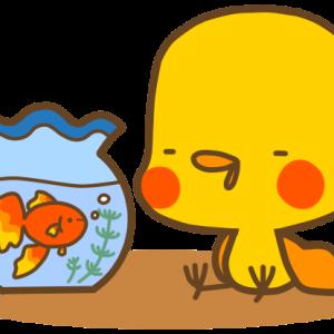 夏季休業のお知らせ(事務所・移動販売)