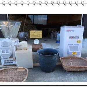 蕎麦の収穫調整―石、泥抜き・磨き