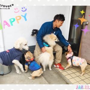 【幼稚園】水曜日は大型犬もウェルカムです!