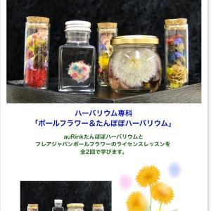 新潟にて『ボールフラワー&たんぽぽハーバリウム』