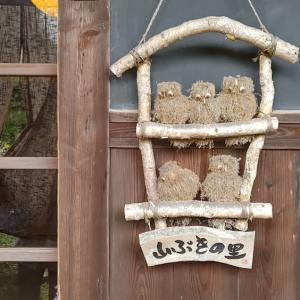 千早赤阪村の山ぶきの里でランチ、とても素敵な古民家カフェ