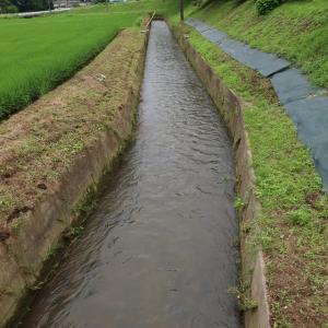 川の水が減りました。