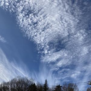 芸術的な雲