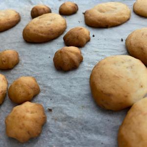 やってみないと何も始まらない。卵乳小麦大豆ナッツ不使用クッキー