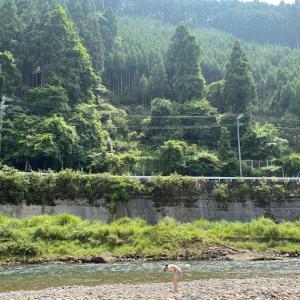 夏休み〜宇津峡キャンプ場に来てます〜1日目