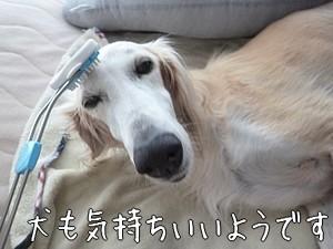 つれモナショッピングチャンネル