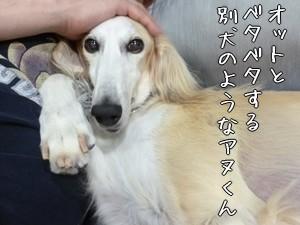 アヌくん突然の大変身!