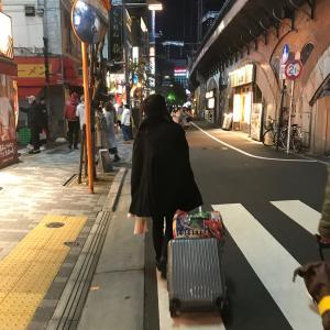 ボタニカルマーケット&世界らん展