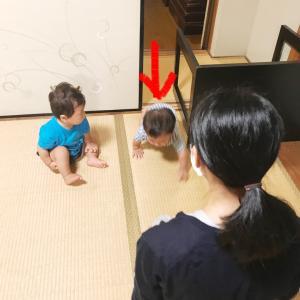 赤ちゃんをマニアックな視点から観察できる!