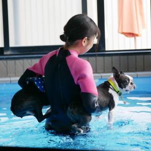 ふたり一緒に泳いでみましょう~♪