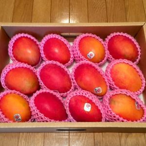 台湾の友人からの贈り物 マンゴー