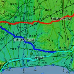 「相州大山信仰の底流」(川島 敏郎)に掲載された道中記・紀行文