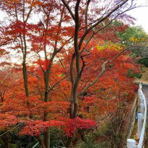 神戸市の錨山
