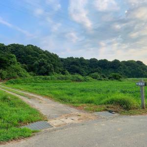 秋田市の飯岡山
