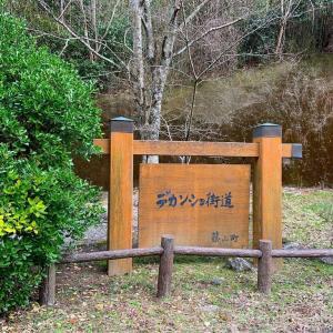 丹波篠山市の桂山と仁入道ヶ岳