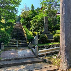 浅香山は山頂手前でリタイア