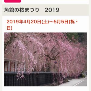 角館しだれ桜の旅。。。